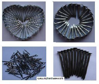 Sell Common Iron Wire Nail