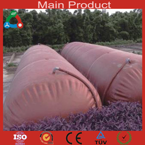 Sell Hot Sale Industry Fuel Application Biogas Plant