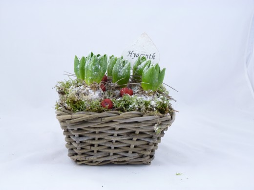 Sell Wicker Flower Pot Willow Garden Basket