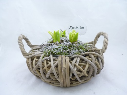 Sell Wood Chip With Willow Weaving Basket Wicker Flower