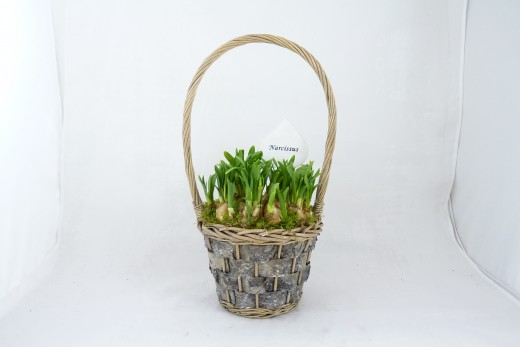 Sell Wood Flower Basket Willow Garden