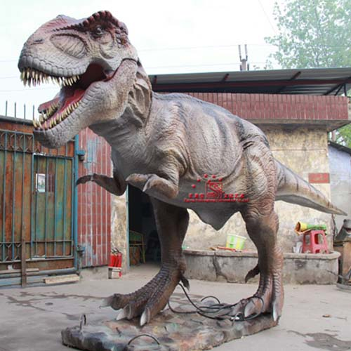 Simulation Dinosaur Model Outdoor And Indoor Equipments