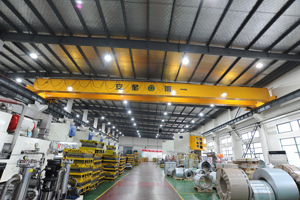 Single Girder Overhead Crane Hot Sale
