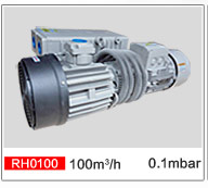 Single Stage Vane Vacuum Pump For Refrigeration Equipment Rh0100