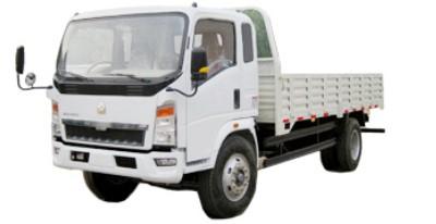 Sinotruk Howo Light Truck Zz5047ccyb2813c1y45 Type
