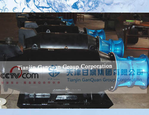 Sleigh Floating Type Axial Flow Pump