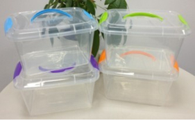 Small Transparent Storage Box With Lid