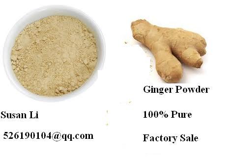 Spice Seasoning Herb Tea Benefit Digestion Sugar Free Ginger Root Powder Bulk Sale
