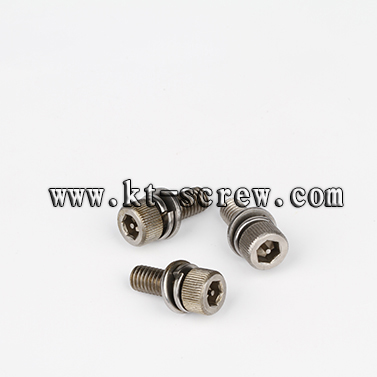 Stainless Steel Hex Socket Combination Screw With Spring And Flat Washer