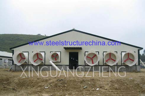 Steel Structure Pig Shed Poultry House