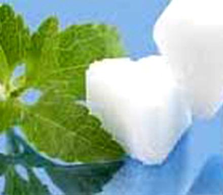Stevia Seeds At 20 8451 Temperature Germination