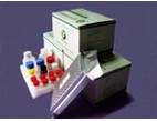 Streptomycin Elisa Test Kit