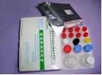 Sulfonamides Residues Sas Elisa Test Kit