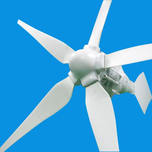 Sun Gold Power 1000w Horizontal Axis Wind Turbine Generator 24v Ac 5 Blades