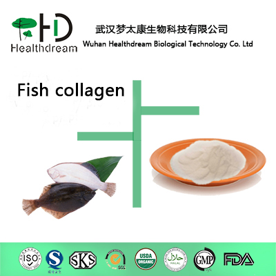 Supply High Quality Fish Collagen