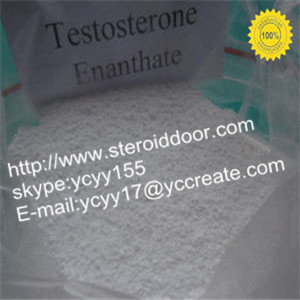 Testosterone Enanthate Powder Or Injectable Liquids Build Your Body
