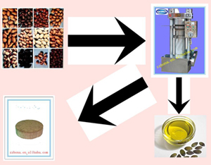 The Special Parts Of Edible Oil Refining