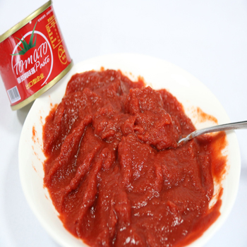 Tomato Past Canned