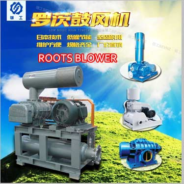 Tri Lobe Roots Blower For Water Treatment
