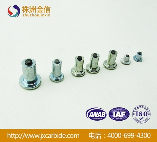 Various High Quality Carbide Car Tire Studs Winter Stud