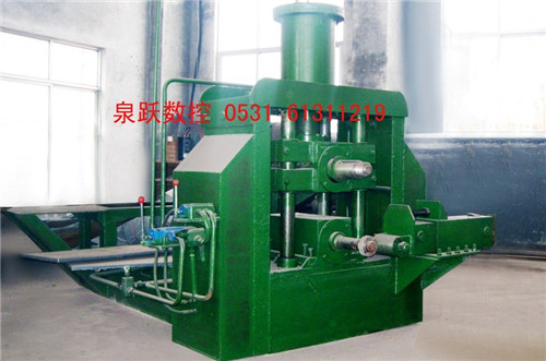 Vertical Ring Rolling Machine