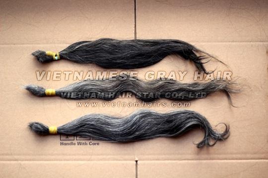 Vietnam Human Remy Gray Hair