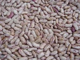 We Offer Best Quality Light Kidney Beans