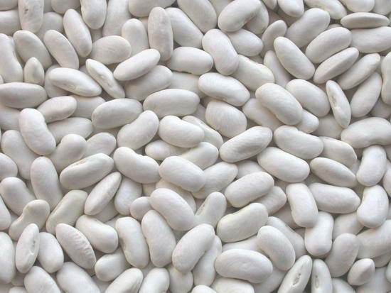 White Beans Fresh Egypt