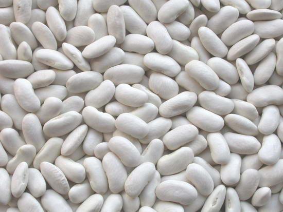 White Beans Fresh Egypt