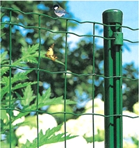 Wire Mesh Fences Fencing