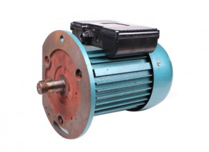 Y Series Three Phase Motor Y100 B5 Pig Iron