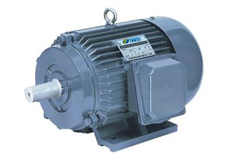 Y Three Phase Electric Motor