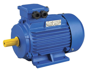 Y2 Three Phase Induction Motor