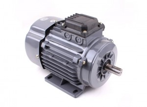 Ys80 B3 Ys Series Three Phase Motor