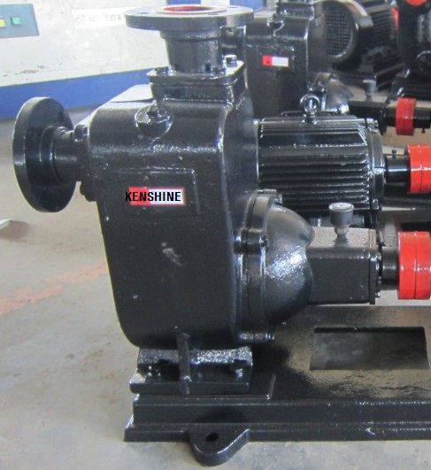 Zw Self Priming Sewage Pump For Waste Water