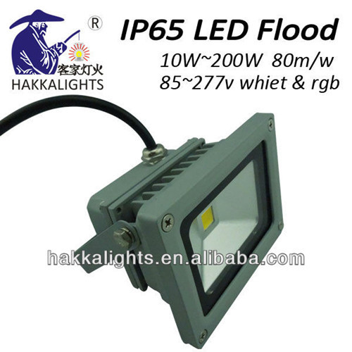 10w Aluminum Led Floodlight
