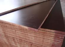 12mm Poplar Core Film Faced Plywood