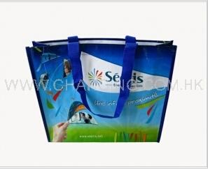 2 Laminated Woven Bag