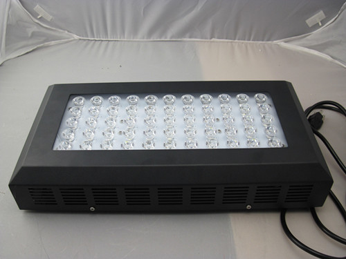 2013 120w Multicolor Bridgelux Led Professional Lighting Dimmable Lcd Timer