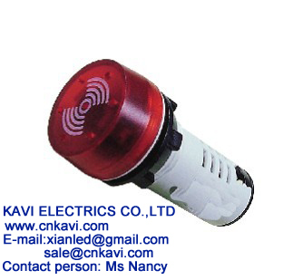 22mm Led Flash Buzzer
