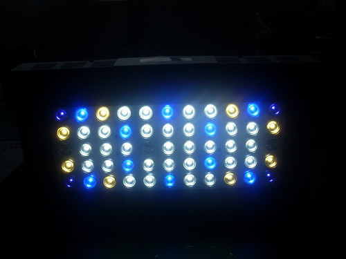 55x3w Epistar Led Aquarium Light Dimmable 120w 3 Years Warranty 2013