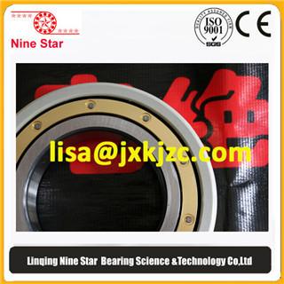 6213m C4vl0241 Insulated Bearings For Vfd Motors