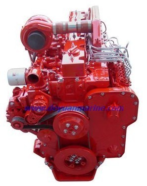 6cta8 3 Series China Cummins Engine