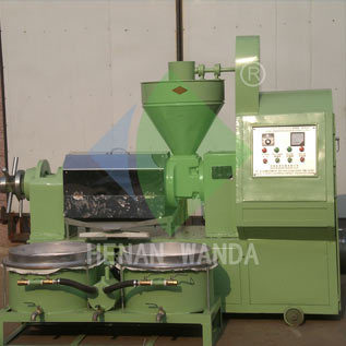 6yl 100a Combined Screw Oil Press