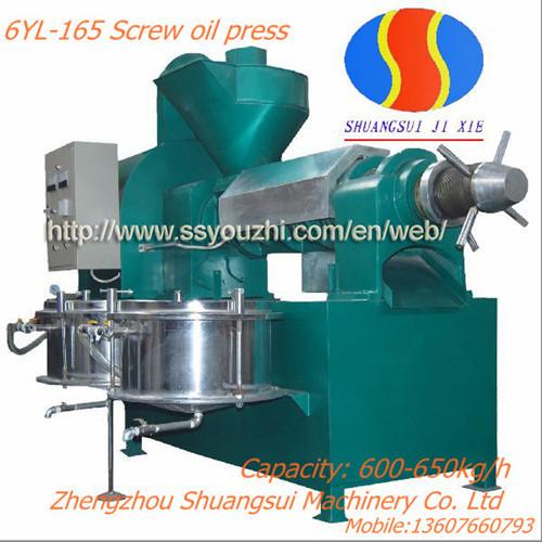 6yl 165 Screw Oil Press Machine