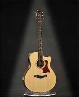 Acoustic Guitar K A2ceq
