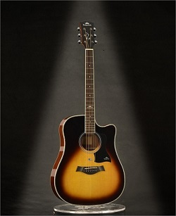 Acoustic Guitar K D1c