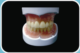 Acrylic Denture Complete Unbreakable Resin Endura Teeth Soft Lining Base