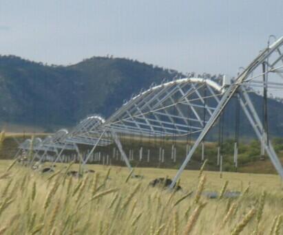 Agricultural Movable Sprinkler Irrigation System Center Pivots Equipment Fo