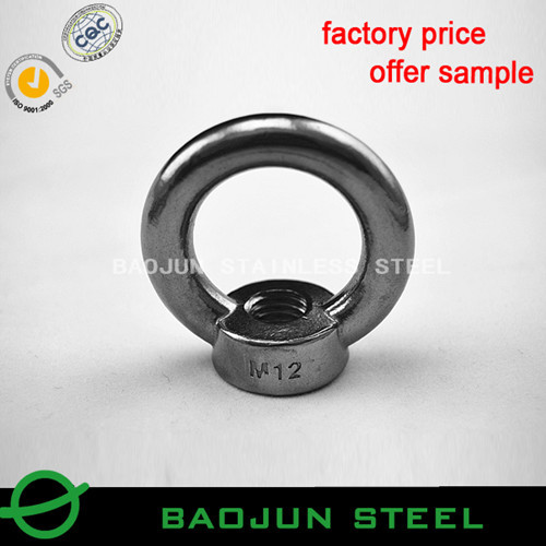 Aisi304 316 Din582 Stainless Steel Eye Nut
